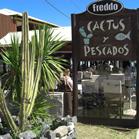 Cactus y Pescados