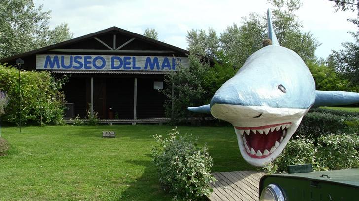 Museo del Mar - Ir con chicos a Punta del Este