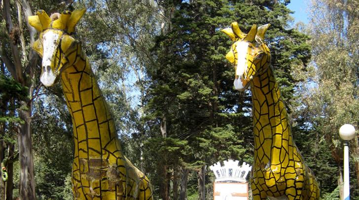 Parque El Jagüel - Actividades con chicos en Punta del Este