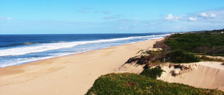 Playa Ocean Park - Punta del Este